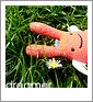 blit_z userpic