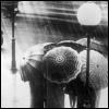 rachel-licious!: umbrellas