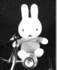 Miffy, Rabbit-on-the-loose, Carrotblog, Fine Art Rabbit