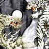 Tiger-Dragon YingYang