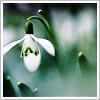 Gwenda [userpic]