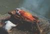 pyropath userpic