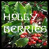 holly_berries userpic