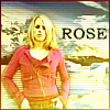 Neth: DW Rose