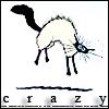 Cats: Crazy Solange