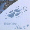 Follow your heart wolf track