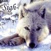 Sigh wolf