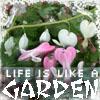 garden by t_moonstriker