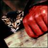 hellboy kitty