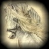 phantom_luv userpic