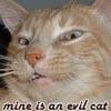 evil peanut