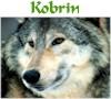 Kobrin