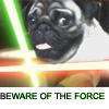 Pug Force