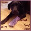 sheba sock