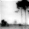 __purity userpic