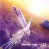 phoenixrising52 userpic