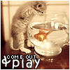 Play wi' me!