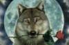 ember_rose_wolf userpic