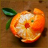 orange_icondescence