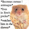 Loyaulte Me Lie: mouse!animagus