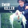 swan killer
