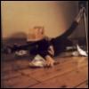 babooshka on floor