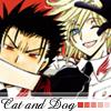 KuroFai - Dog and cat by evercool