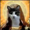 st_kitten userpic