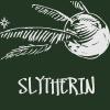 slytherin snitch