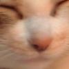 kiffy userpic