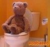 poobased bear