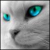 cherrie_wing userpic