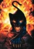 hellpanther