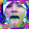 koki woof