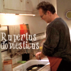 Rupertus  Domesticus