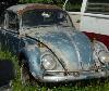 1954 Oval Bug (restoration project)