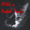 rebel kitty