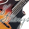 8 Strings, Mandolin