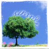tippy_cup_ella userpic