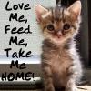 Love Me Feed Me