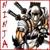 Ninja - Storm Shadow