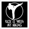 Ninjas Kick It