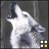wolfknight15 userpic