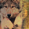 runaway wolf
