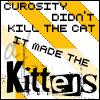 Curiosity made kittens