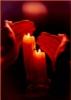 icypola: candle