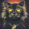 Кошка, черная