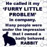 Furry Little Problem
