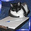 Cleo Writing