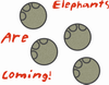 about_elephants userpic
